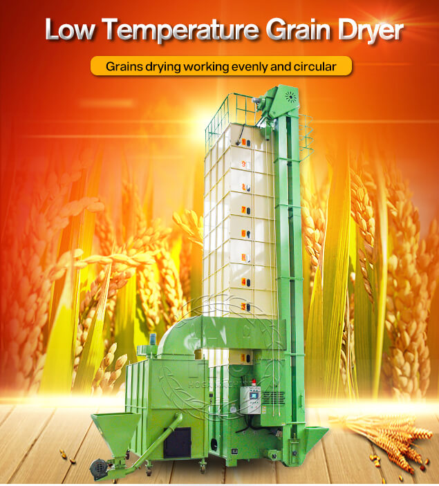 rice dryer machine-rice mill plant
