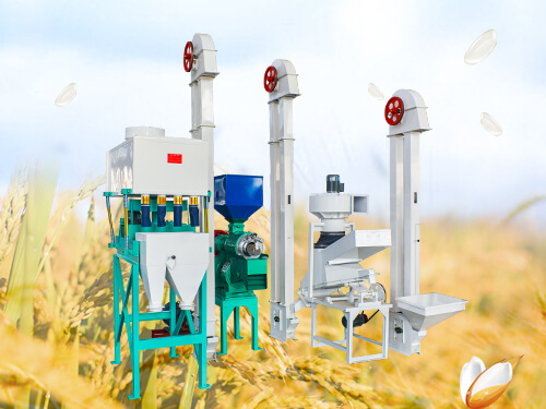 10T/D Mini Rice Mill Plant