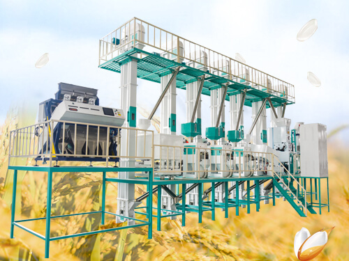40T/D Rice Mill Plant