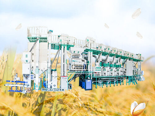 100T/D Rice Mill Plant